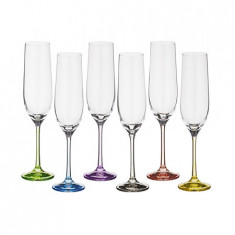 SET 6 COPAS CHAMPAGNE BASE COLOR SPECTRUM